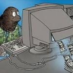 Мошенничество в интернете, 14 способов как не стать жертвой
