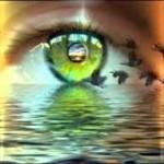 Почему люди видят мир по-разному