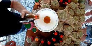 Проверка мёда на натуральность